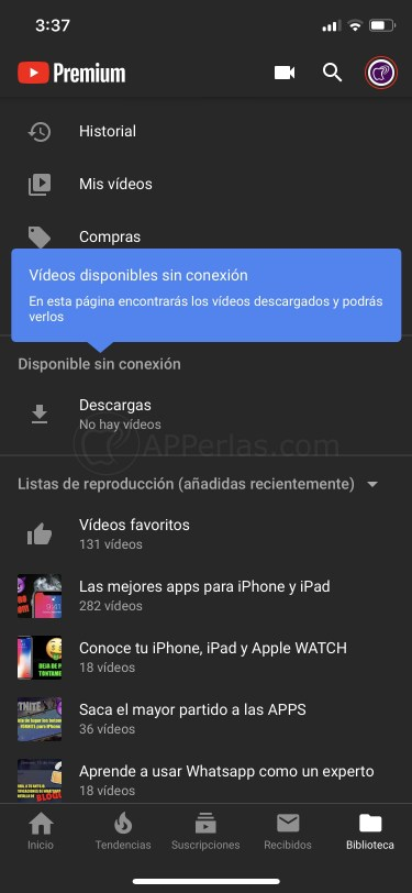 Vídeos descargados de Youtube