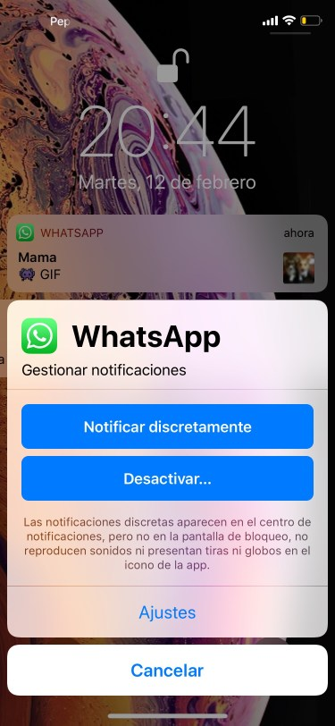 notificaciones discretas 2