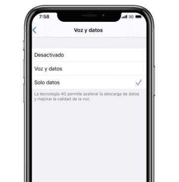 Voz y datos en iOS 13