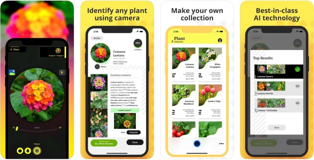 Herramienta para identificar plantas