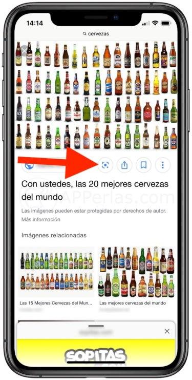 Botón Google Lens en Safari