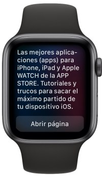 web desde el Apple Watch 1