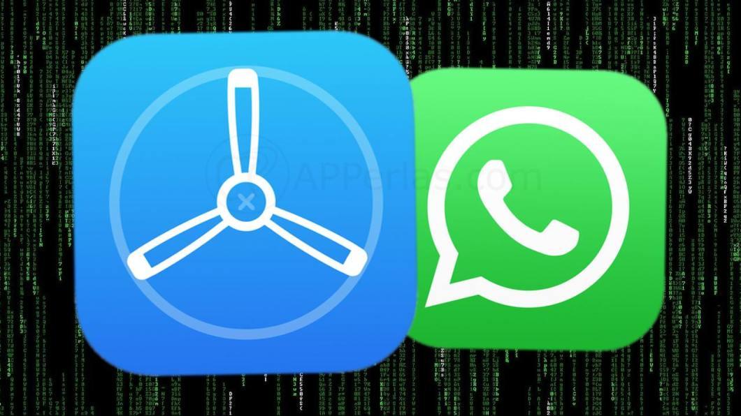 Beta de WhatsApp
