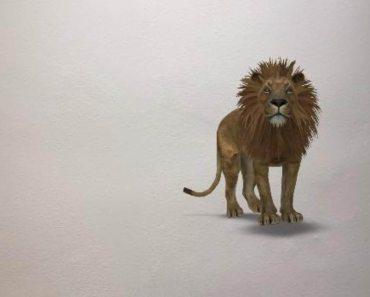 Así puedes ver los animales 3D de Google en tu iPhone
