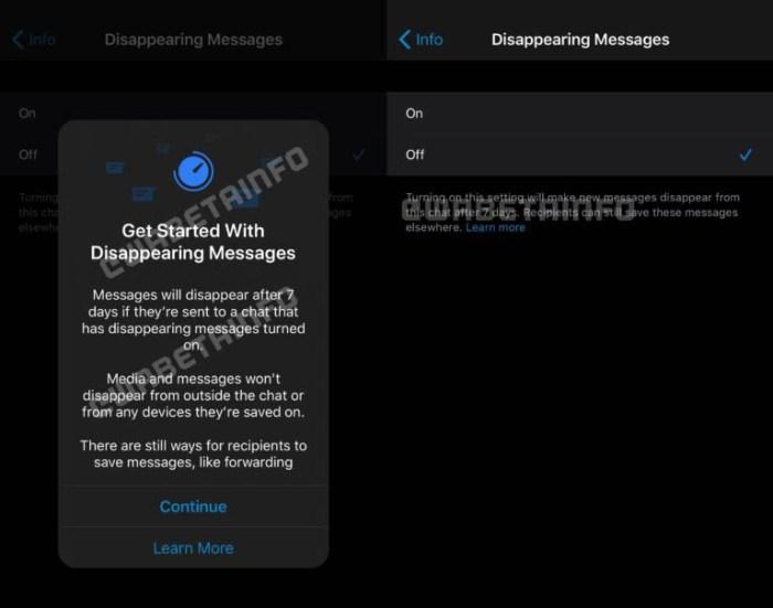 mensajes temporales autodestruyen whatsapp 1