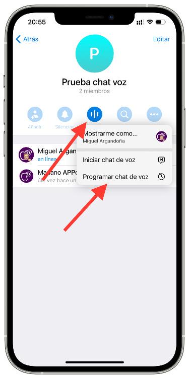 programar un chat de voz 1