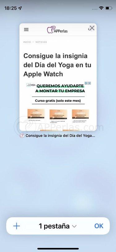 Captura de pantalla de Safari en iOS 15