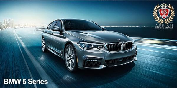 BMW 520 - Driver/Tour Guide