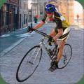 Real Bike Race