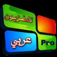 Arab TV
