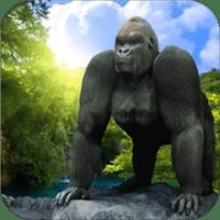 Gorilla Simulator