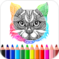 Kids Coloring Book and drawing book