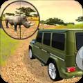 Safari Hunting