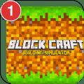 Block Craft : Building Simulator