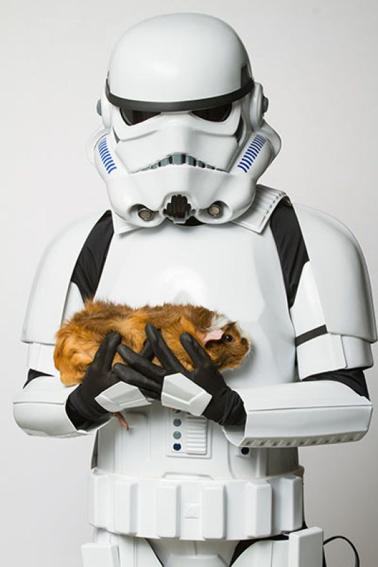 star-wars-animales-5
