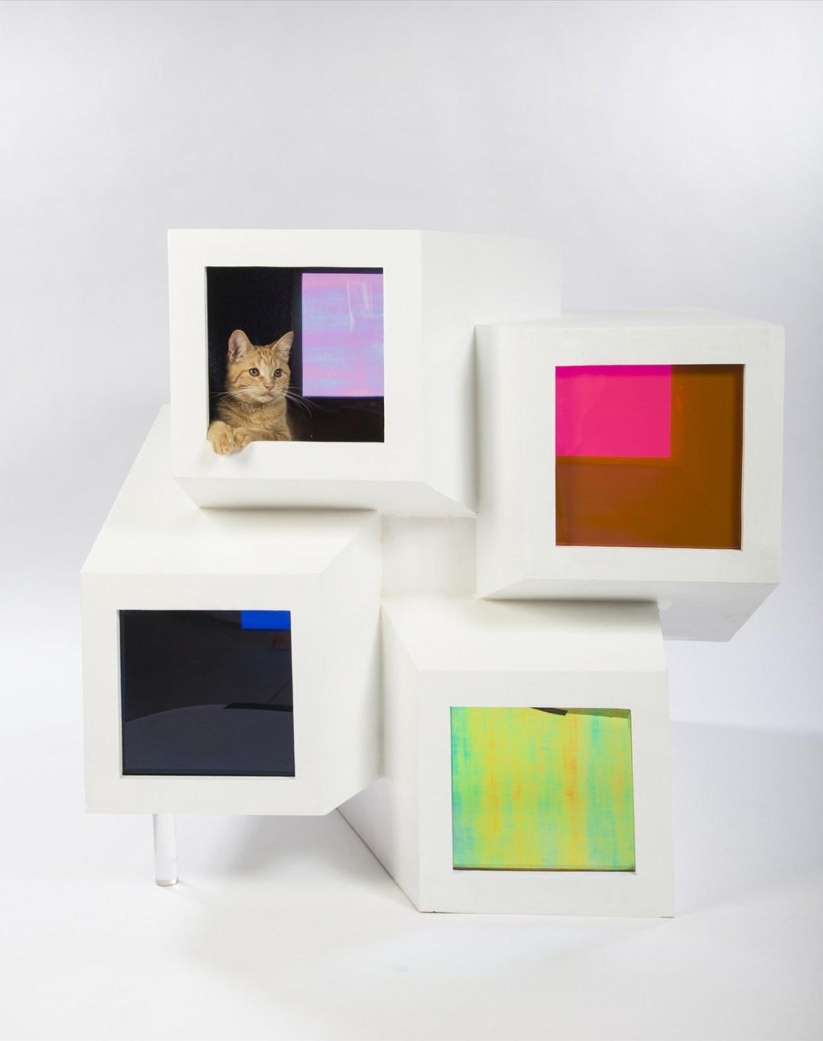 Perkins-&-Will-Catleidoscope