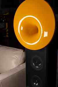 Acapella Acoustic Solid-1959