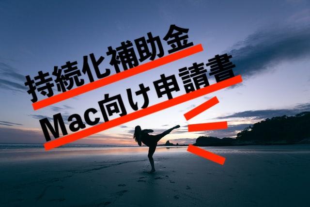沖縄 持続化補助金 Mac Page Apple iPad