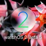 نظام watchOS 2 Beta 5