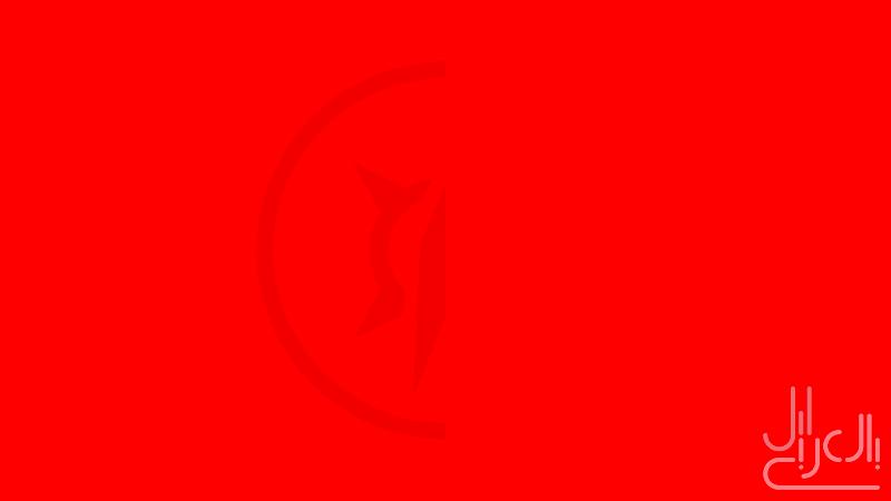 Webkit-Color-Wide-Logo