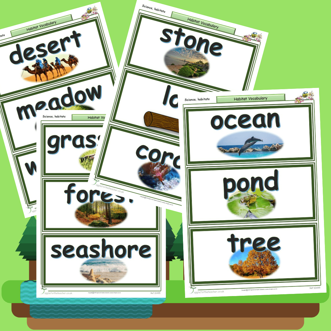 Habitats Vocabulary Display Cards