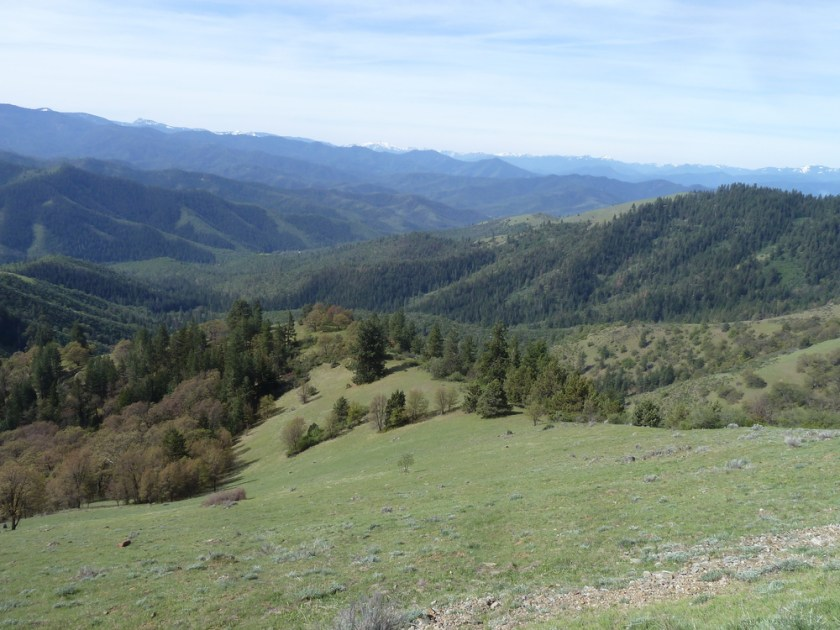 Looking south from the proposed Jack-Ash Trail into the Little Applegate Valley.