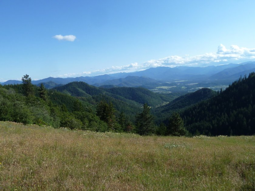 A view down Miners Creek from the proposed West Applegate Ridge Trail. Miners Creek is on the eastern end of the massive Pickett West Planning Area.