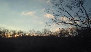 6. Color landscape