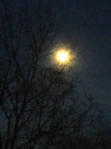 aura around the moon