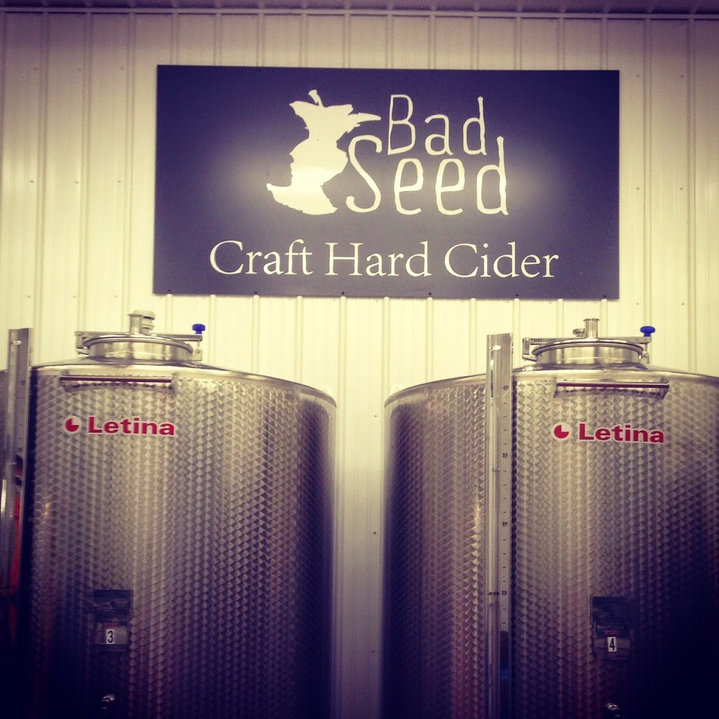 Bad Seed Cider Tap Room Review