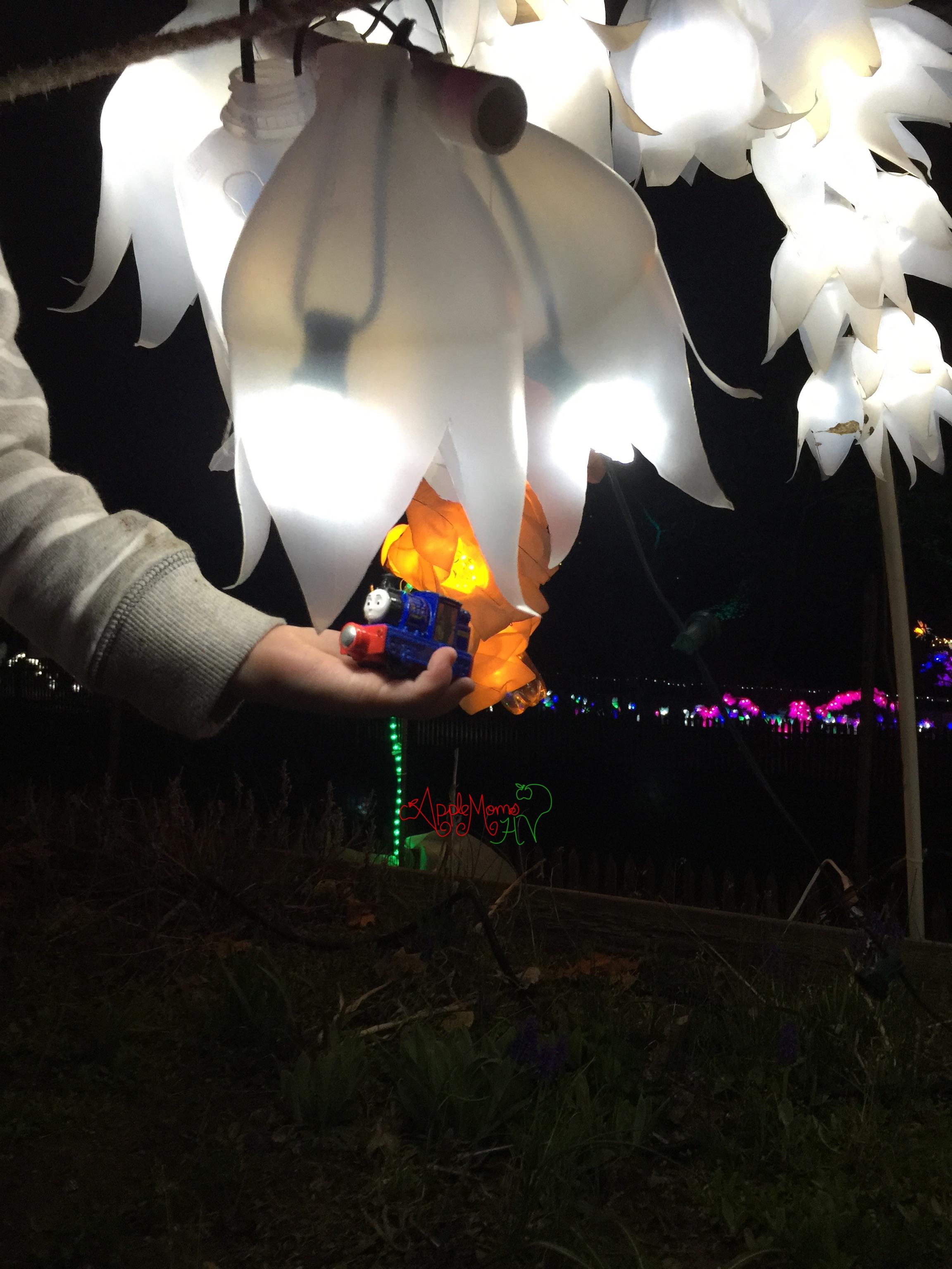 lightscapes hudson valley
