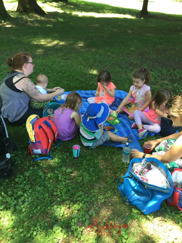 Picnic Lunch at Sunnyside