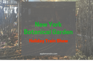 GIVEAWAY: NYBG Holiday Train Show