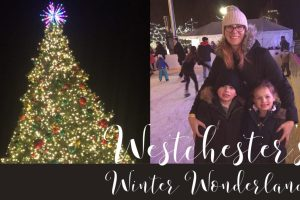 Review: Westchester's Winter Wonderland Event