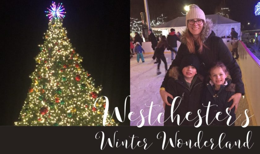 Review: Westchester's Winter Wonderland Event