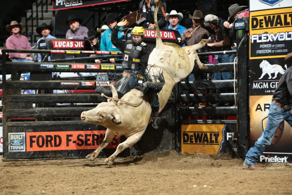 Professional Bull Riders At Madison Square Garden January