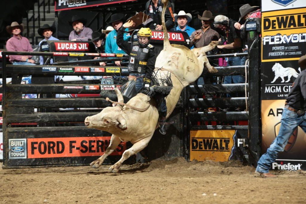 Professional bull riders at madison square garden january - Bull riding madison square garden ...