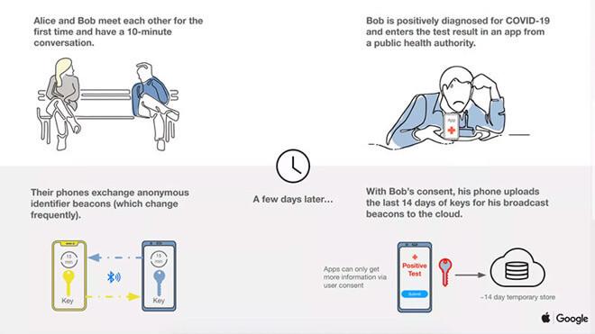 Слайд-колода, объясняющая, как работают системы Apple и Google.