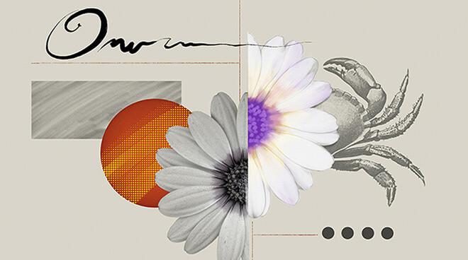 Изображение предоставлено: Adobe