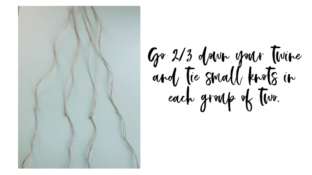 Go 2/3 down your twine and tie small knots in each group of two.