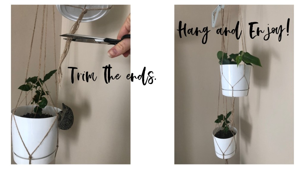 Trim the ends before you hang the plant and enjoy it!