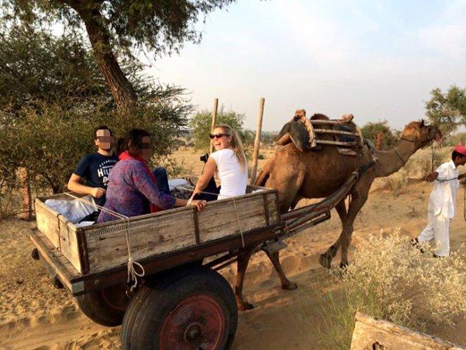 jodhpur indien wüste camel cart ride