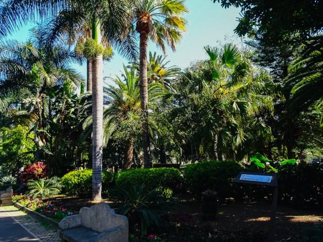 Travelguide Santa Cruz de Tenerife