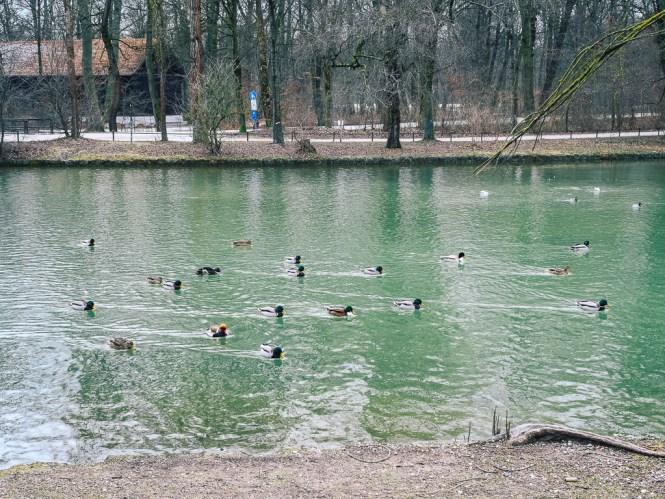Orte zum Relaxen in München aktivitäten