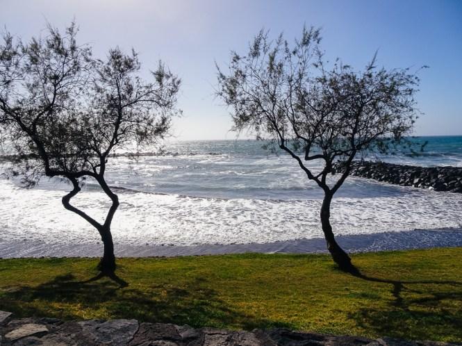 Teneriffa Playa de el Bobo