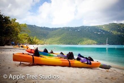 Apple Tree Studios Sail Mag01