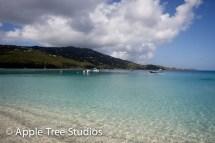 Apple Tree Studios Sail Mag02