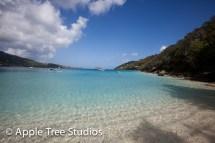 Apple Tree Studios Sail Mag03