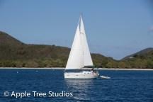 Apple Tree Studios Sail Mag05