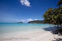 Apple Tree Studios Sail Mag37
